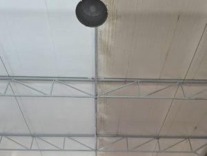 różnica przed i po czyszczeniu dachu